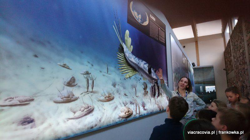 Tak wyglądały prehistoryczne stwory na dnie morza